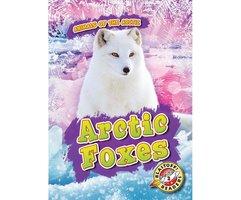 Arctic Foxes - Rebecca Pettiford