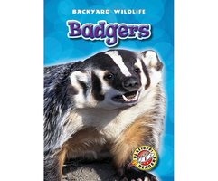 Badgers - Derek Zobel