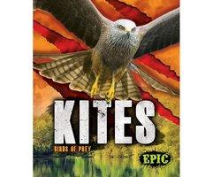 Kites - Nathan Sommer