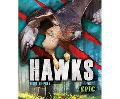 Hawks - Nathan Sommer