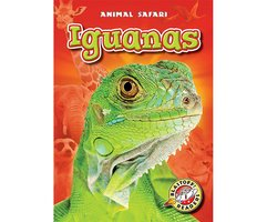 Iguanas - Chris Bowman
