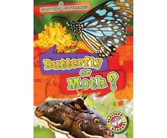 Butterfly or Moth? - Christina Leaf
