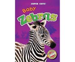 Baby Zebras - Megan Borgert-Spaniol
