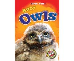 Baby Owls - Christina Leaf