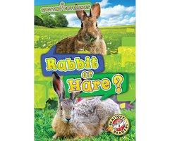 Rabbit or Hare? - Christina Leaf