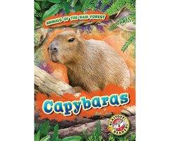 Capybaras - Rachel Grack