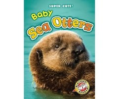 Baby Sea Otters - Christina Leaf