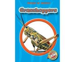 Grasshoppers - Emily K. Green