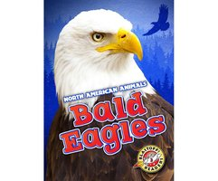 Bald Eagles - Chris Bowman