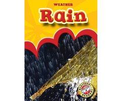 Rain - Ann Herriges