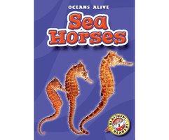 Sea Horses - Ann Herriges