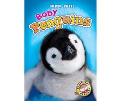 Baby Penguins - Kari Schuetz