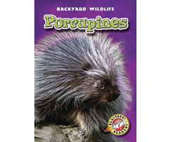 Porcupines - Emily Green