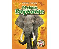 African Elephants - Kari Schuetz