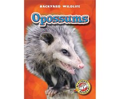 Opossums - Emily Green