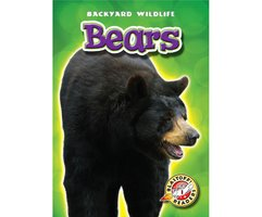 Bears - Emily Green