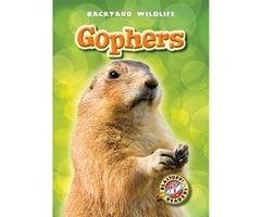 Gophers - Derek Zobel