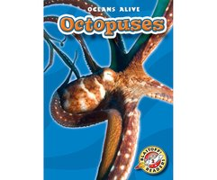 Octopuses - Ann Herriges