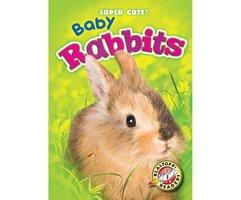 Baby Rabbits - Bethany Olson