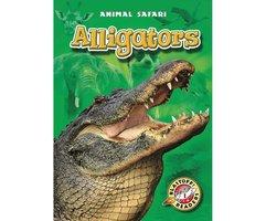 Alligators - Derek Zobel
