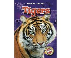 Tigers - Derek Zobel
