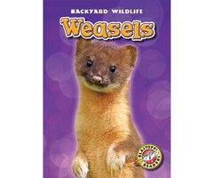Weasels - Megan Borgert-Spaniol
