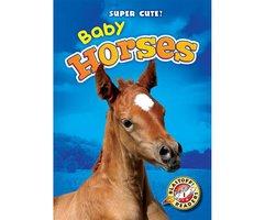 Baby Horses - Bethany Olson
