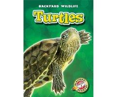 Turtles - Emily K. Green