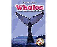 Whales - Ann Herriges