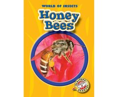 Honey Bees - Colleen Sexton