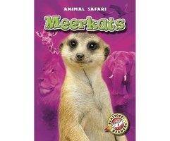 Meerkats - Kari Schuetz