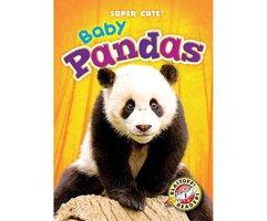 Baby Pandas - Bethany Olson