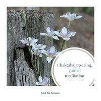 Chakrabalansering - Kia Temmes