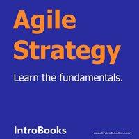 Agile Strategy - Introbooks Team