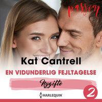 En vidunderlig fejltagelse - Kat Cantrell