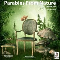 Parables from Nature Vol. 2 - Margaret Gatty