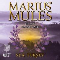 Marius' Mules V: Hades' Gate - S.J.A. Turney