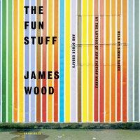 The Fun Stuff - James Wood
