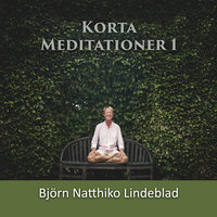 Korta Meditationer 1 - Björn Natthiko Lindeblad