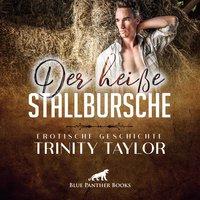 Der heiße Stallbursche - Trinity Taylor