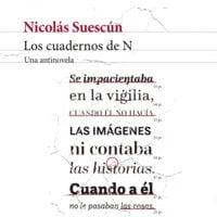 Los cuadernos de N - Nicolás Suescun