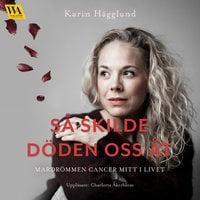Så skilde döden oss åt: mardrömmen cancer mitt i livet - Karin Hägglund