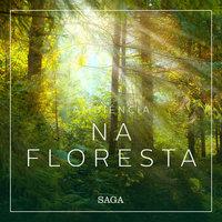 Ambiência - Na Floresta - Rasmus Broe