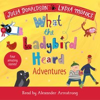What the Ladybird Heard Adventures - Julia Donaldson