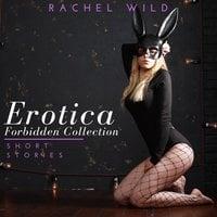 Erotica Forbidden Collection: Short Stories: A Flirting Romance for Adults - Rachel Wild