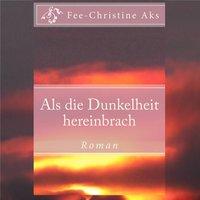 Als die Dunkelheit hereinbrach - Fee-Christine Aks