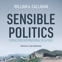 Sensible Politics: Visualizing International Relations - William A. Callahan