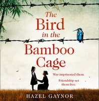 The Bird in the Bamboo Cage - Hazel Gaynor