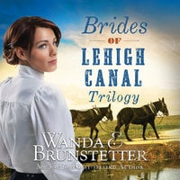 Brides of Lehigh Canal Trilogy - Wanda E. Brunstetter