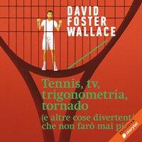 Tennis, tv, trigonometria, tornado (e altre cose divertenti che non farò mai più) - David Foster Wallace